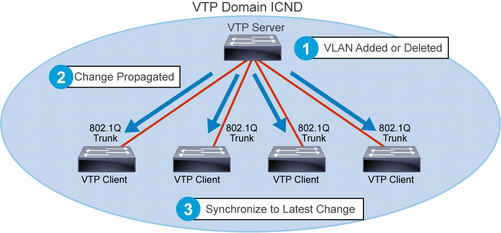 DTP Dynamic Trunking Protocol VLAN Trunking Protocol