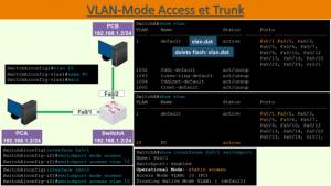 Access Trunk: Mode
